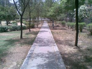 Focus On Studies: Walking Path in a Park in Sector 5, Dwarka, New Delhi