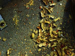 Littering: Peanut Shells on a Train Floor