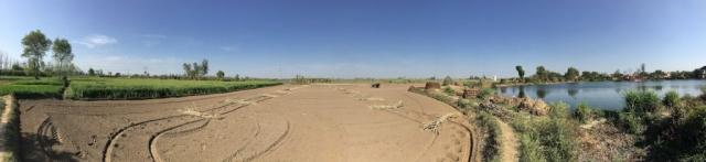 A Beautiful View of a Sugarcane Field Ready for Sowing, Yahiyapur Village, Khatauli, Uttar Pradesh 10032018